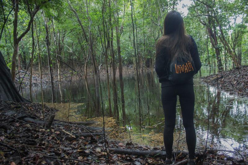 amazonia_floresta